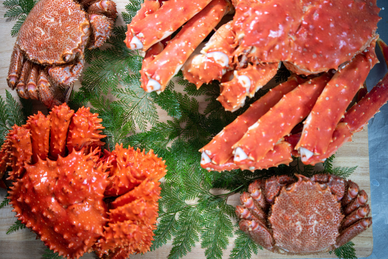 北海道根室産【堅蟹】【訳あり品】数量限定販売【送料無料】
