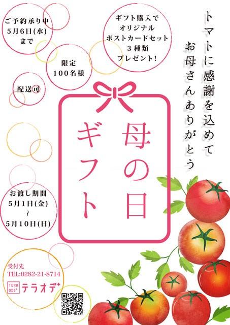 【母の日ギフト】トマトに感謝を込めて/オリジナルポストカード(3種類)セット無料プレゼント