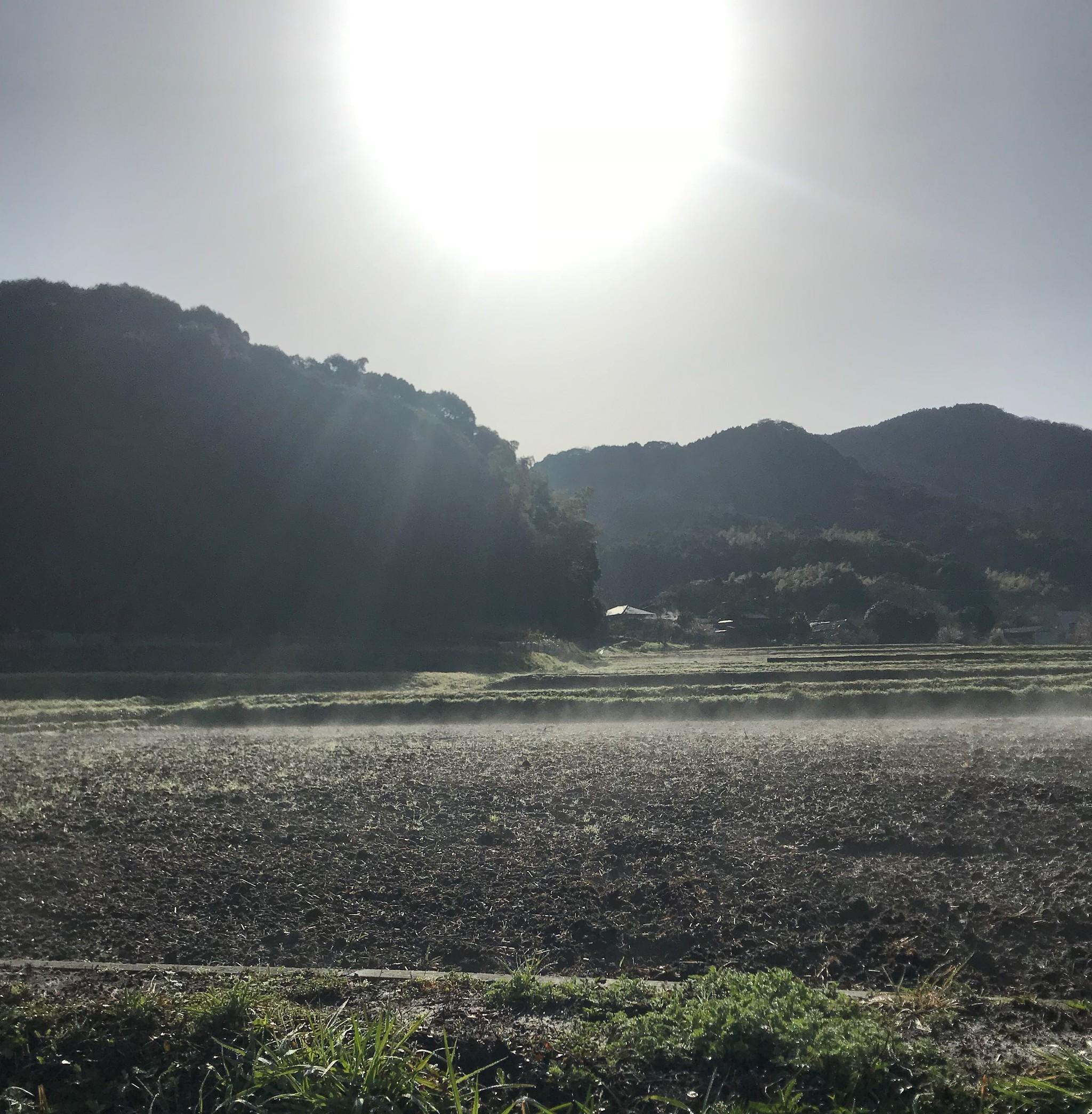 【福岡県香春町限定】農業をされている方へ。農地、受け継ぎます。