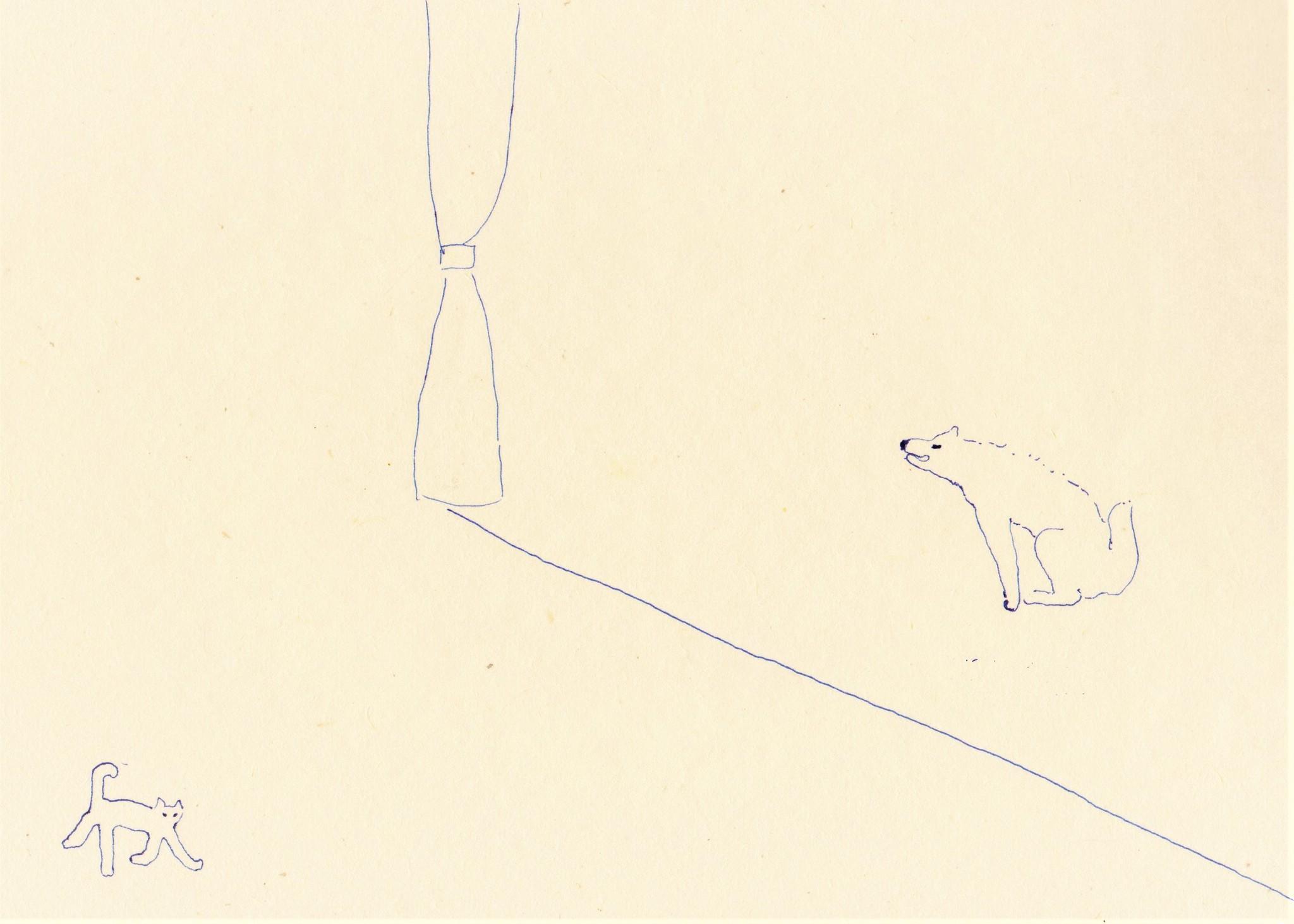 drawing「テリトリー」