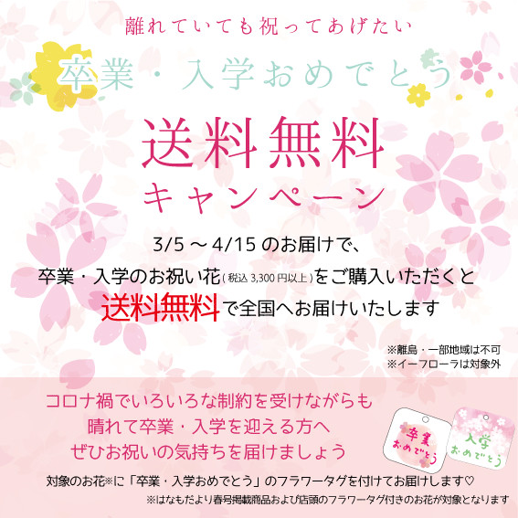 卒業・入学おめでとうキャンペーン!