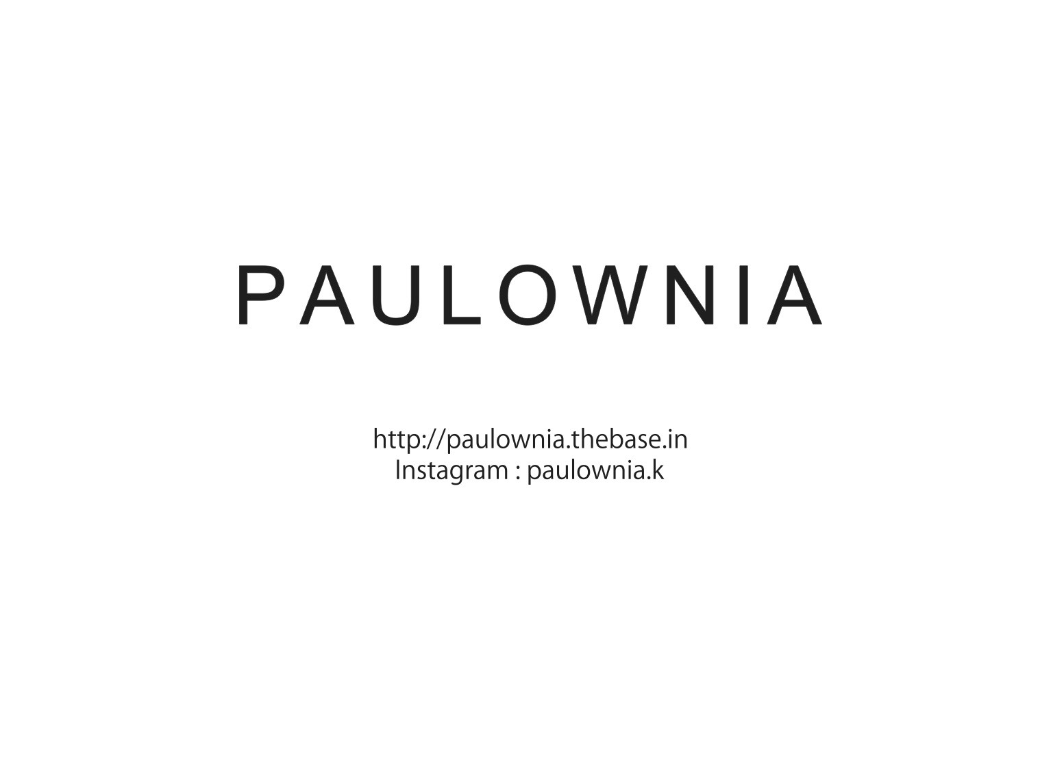 Paulownia <ポロウニア>