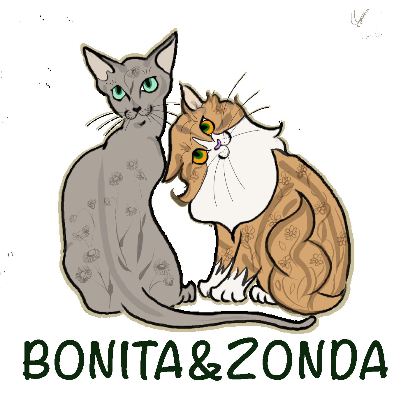 BONITA&ZONDA
