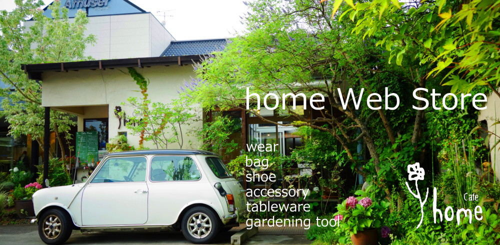 home web store