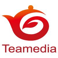 Teamedia OnlineStore