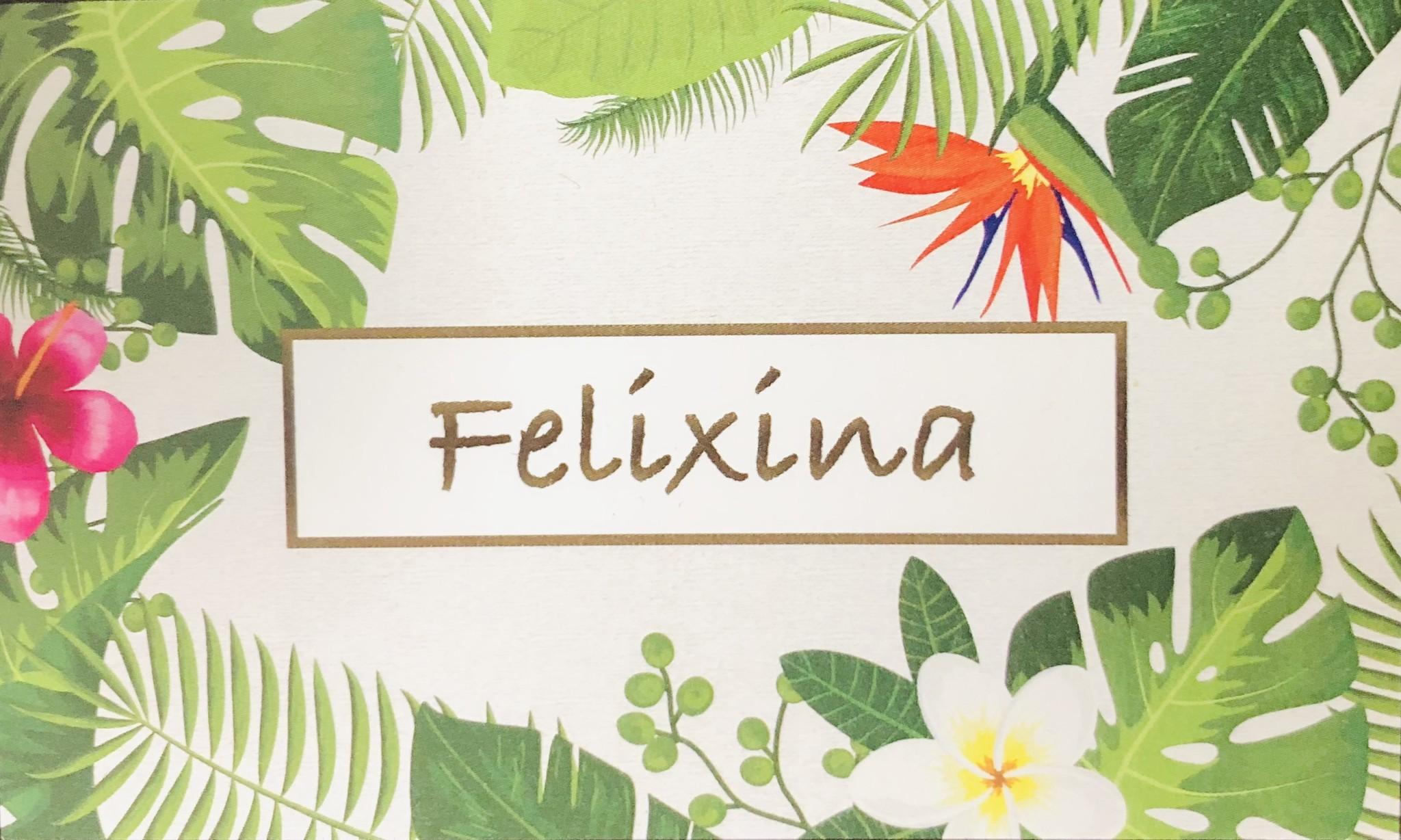 Felixina