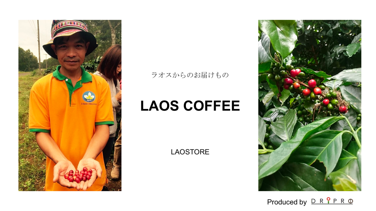 laostore by DRIPRO