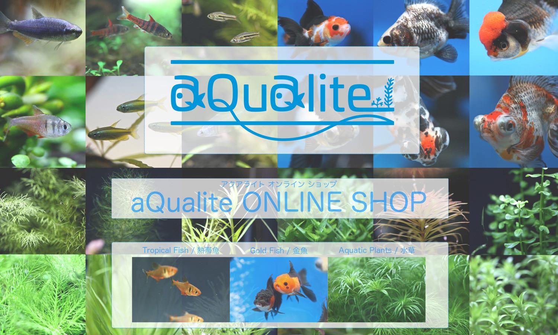 aQualite ONLINE SHOP
