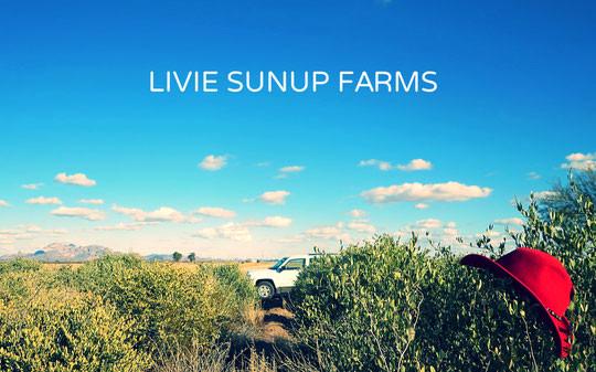 LIVIE SUNUP FARMS
