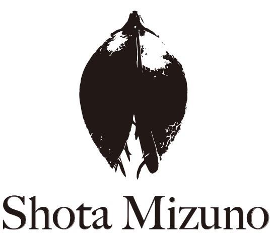 Shota Mizuno