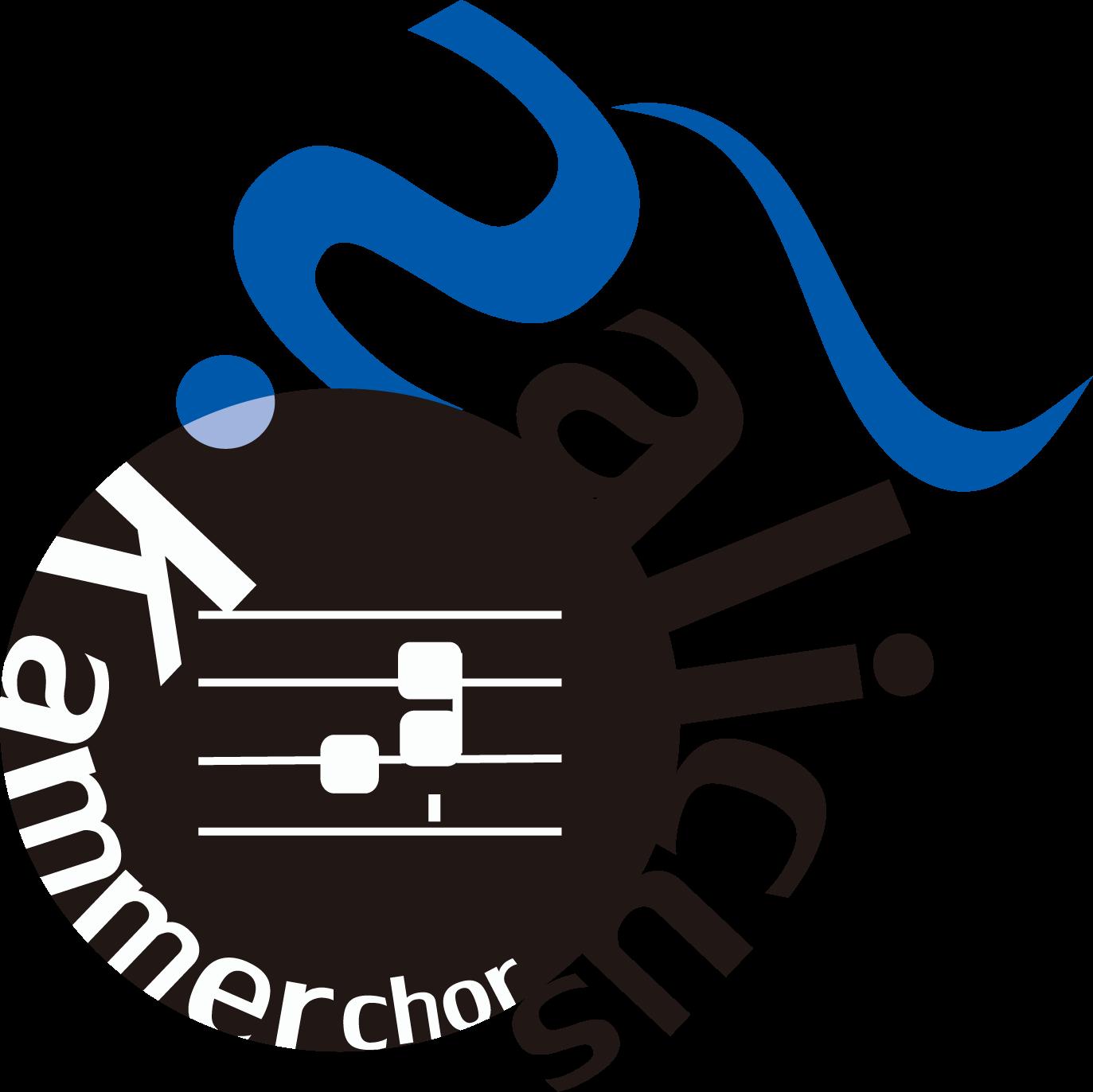 Salicus Kammerchor