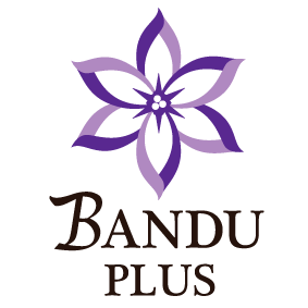 BANDU PLUS
