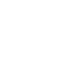spacenoid
