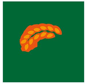 有機栽培や自然農法で育てたお米・Organic Natural Farm Rice 『J-orgarice.jp』