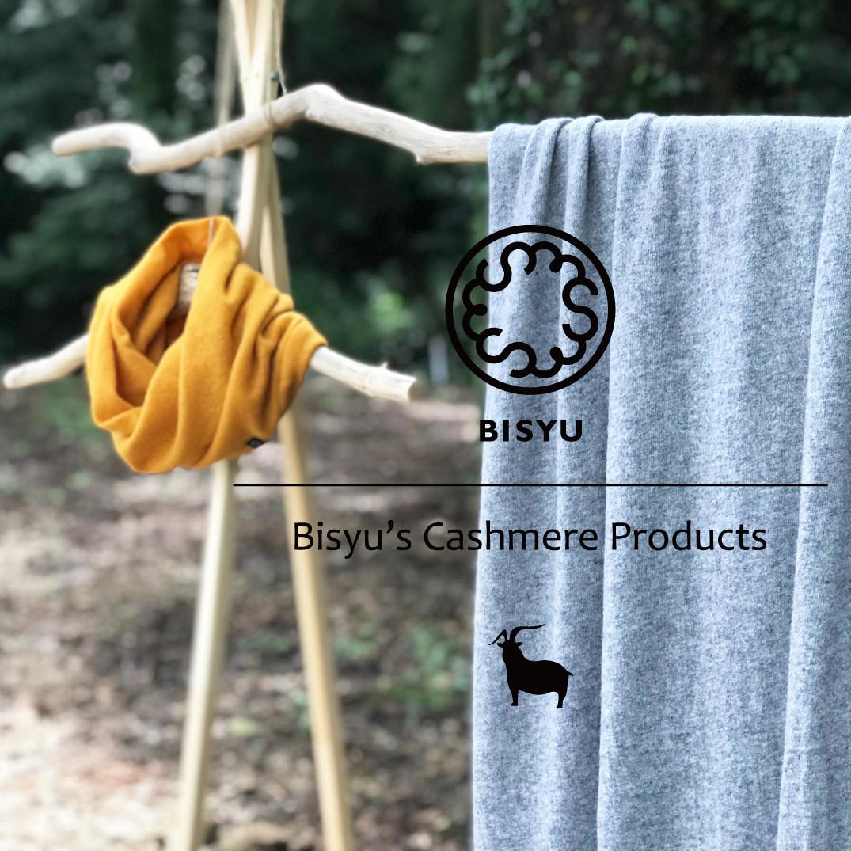 Bisyu's