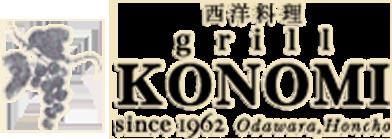 grill KONOMI