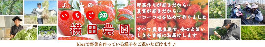 吉見のいちご畑 横田農園