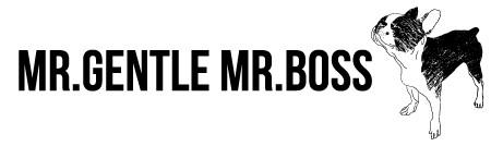 Mr.Gentle Mr.Boss 新しくWeb Store に移転致しました