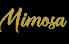 Mimosa.。*゚+.*.。