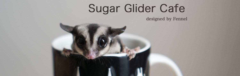 Sugar Glider Cafe designed by Fennel