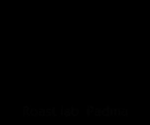 Roastlab Padma