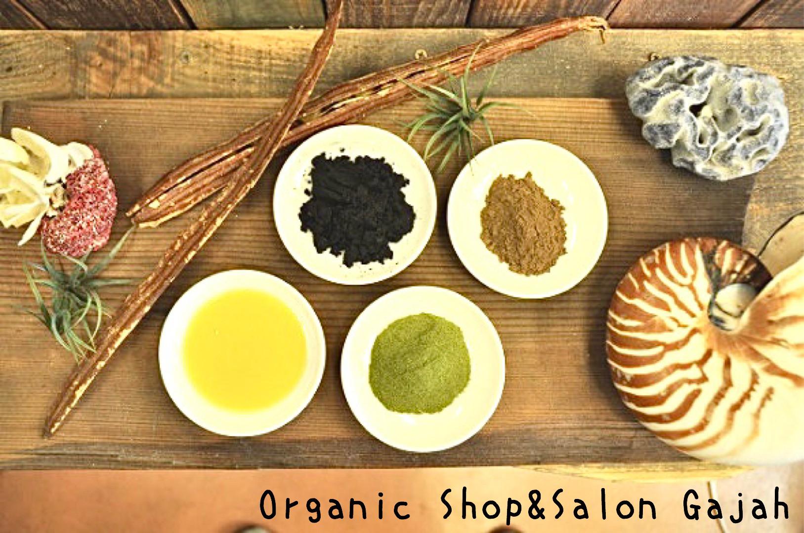Organic Shop Gajah