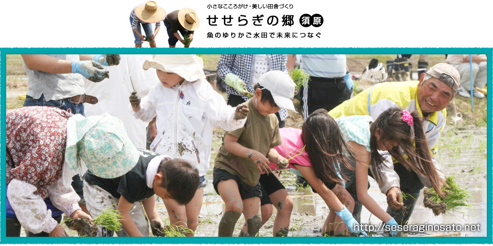 せせらぎの郷 須原 魚のゆりかご水田米