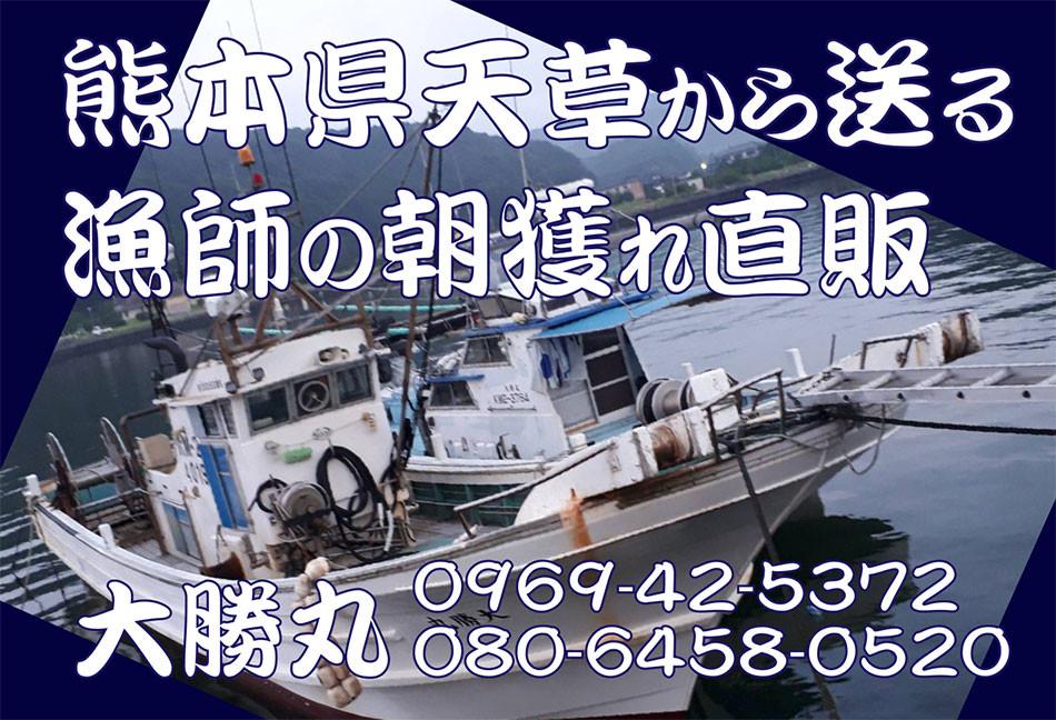 大勝丸 漁師の直販店