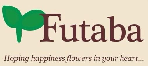 Futaba online