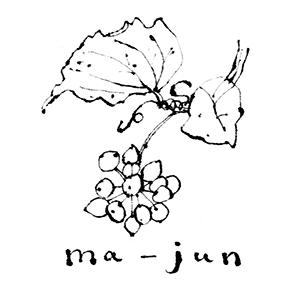 レトロプリント ma-jun