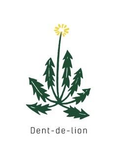 Dent-de-lion (ダンドゥリオン)