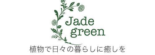 兵庫西宮の観葉植物選び・ボタニカル雑貨ジェイドグリーン
