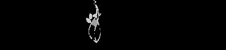 【Ainafフラワーキャンドル専門店】ハンドメイドのキャンドル通販