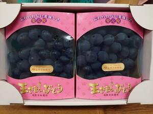王さまのぶどう(種あり巨峰)700g(2~3房)×2箱ピンク