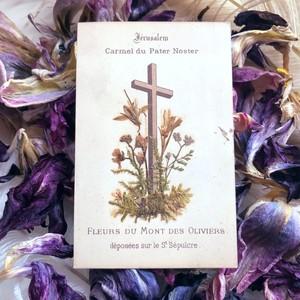 エルサレムの押し花のホーリーカード
