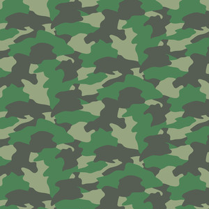 camouflage_022