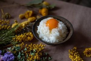 【定期購入/1ヶ月毎】大自然米【無洗米】5kg x 12回(1年間)10%お得!