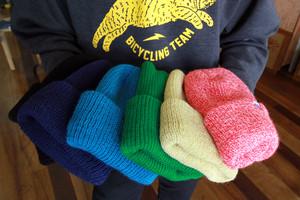 TEAM DREAM BICYCLING TEAM / ProFo Beanie