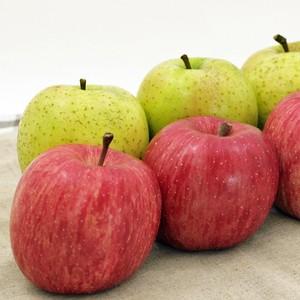 山実りんごミックス 通常品 2段(約10kg) 予約受付中