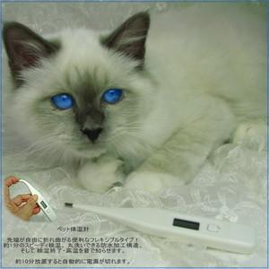 フレキシブル体温計 - ペット -