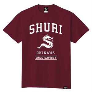 SHURI CITY