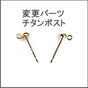 【変更パーツ】チタンピアス(単品購入不可)