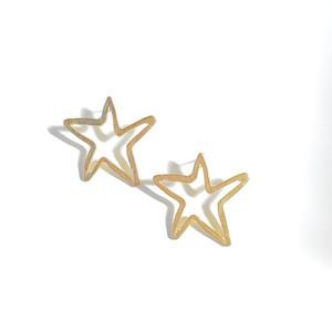 P1132 -  Matte Star
