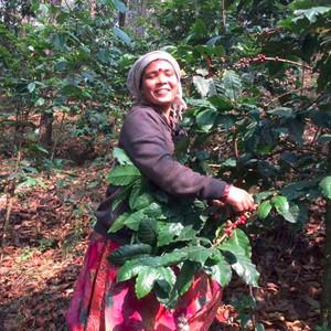 【ネパール応援定期便】  コーヒー170gを毎月お届け