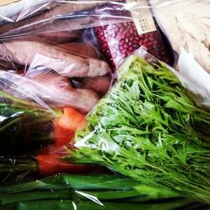 季節の自然栽培野菜セット(農薬・肥料不使用)