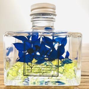 Herbarium square blue