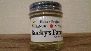 アカシア 30g 小瓶 国産天然(生)蜂蜜 内容 30g