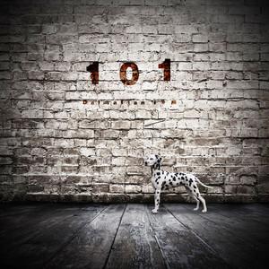 Dalmatian ISM 1st Mini Album「101」