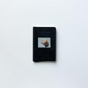 The Duck by Michaël Borremans