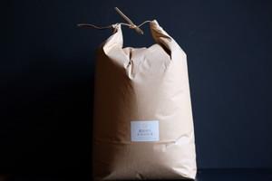 【玄米10kg】源流育ちお山のお米